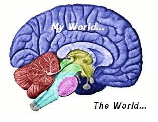 Brain my World